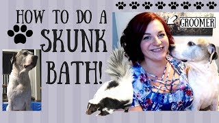 HOW TO GET SKUNK SMELL OFF YOUR DOG! PRO GROOMER DOES SKUNK BATH AT HOME WITH AN EASY RECIPE!