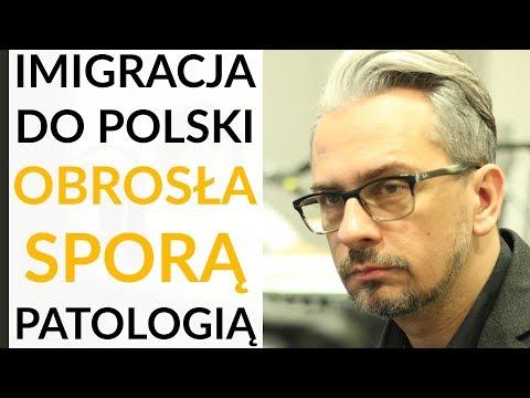 Wikło: Imigracja do Polski obrosła patologiami. To co rząd mówi o nich oficjalnie jest fikcją