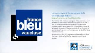 2014 07 21 Le centre régional de sauvegarde de la faune sauvage de Boux 1/5