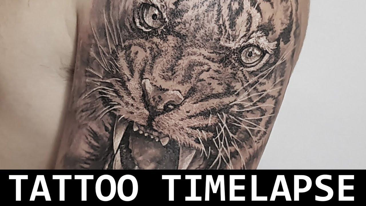 Tattoo Realismo Preto E Sombra Tattoo Timelapse Tiger Tigre Preto