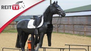 Reiten lernen: Reitunfall - So fallt ihr richtig vom Pferd