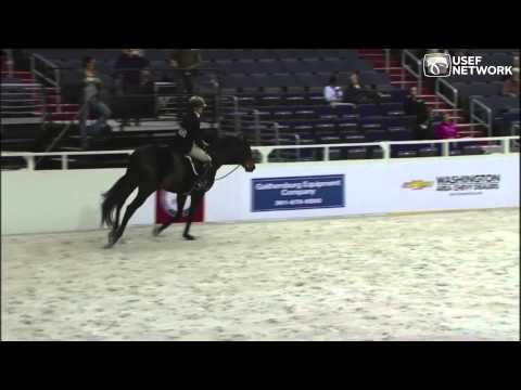 Dudley MacFarlane & Authentic Ride to WIHS Adult Amateur Hunter Championship