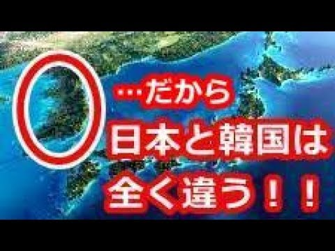 【衝撃】日本が韓国と相容れない理由は、これだった!「みんな仲良く」の日本人、「俺が俺が」の韓国人【海外が感動する日本の力】海外の反応