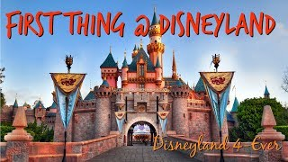 What to Ride First at Disneyland Park - Disneyland Vacation Tips