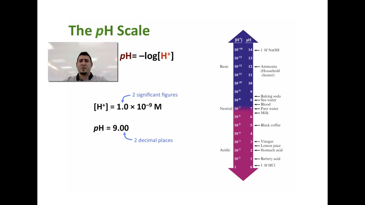 Acids  for Ph Scale Acids And Bases  45gtk