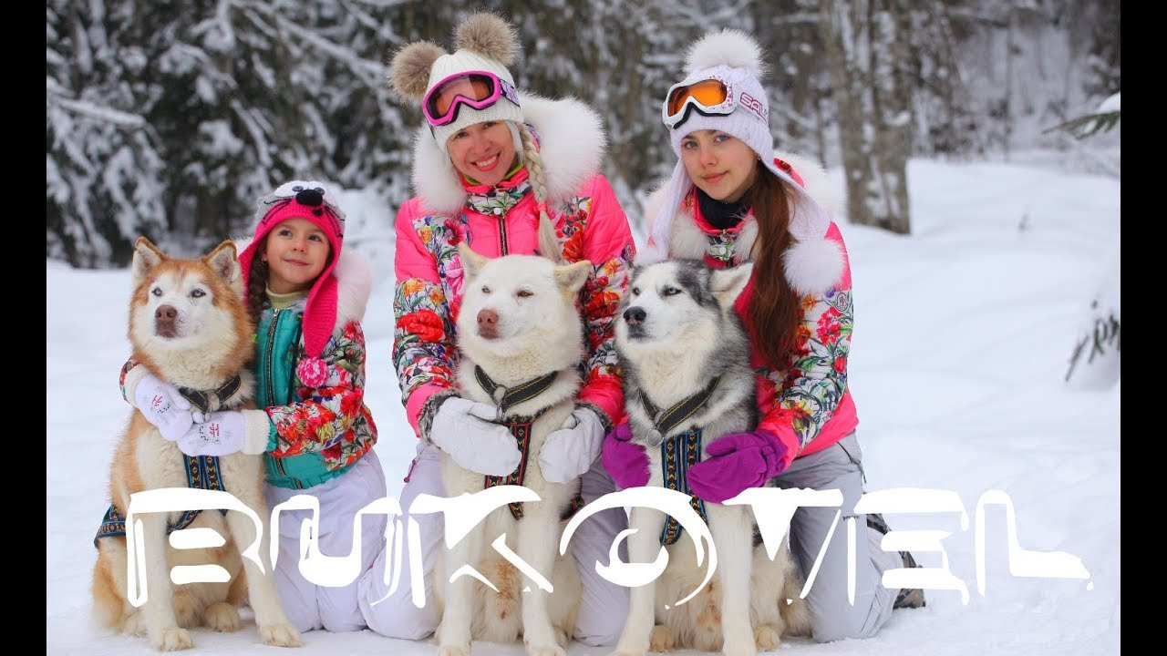 BUKOVEL 2018: costs , households with kids | BUKOVEL. Ukrainian Carpathians