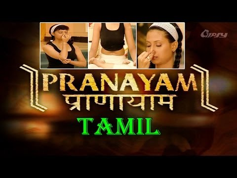 Pranayam - Your Yoga Gym -Tamil