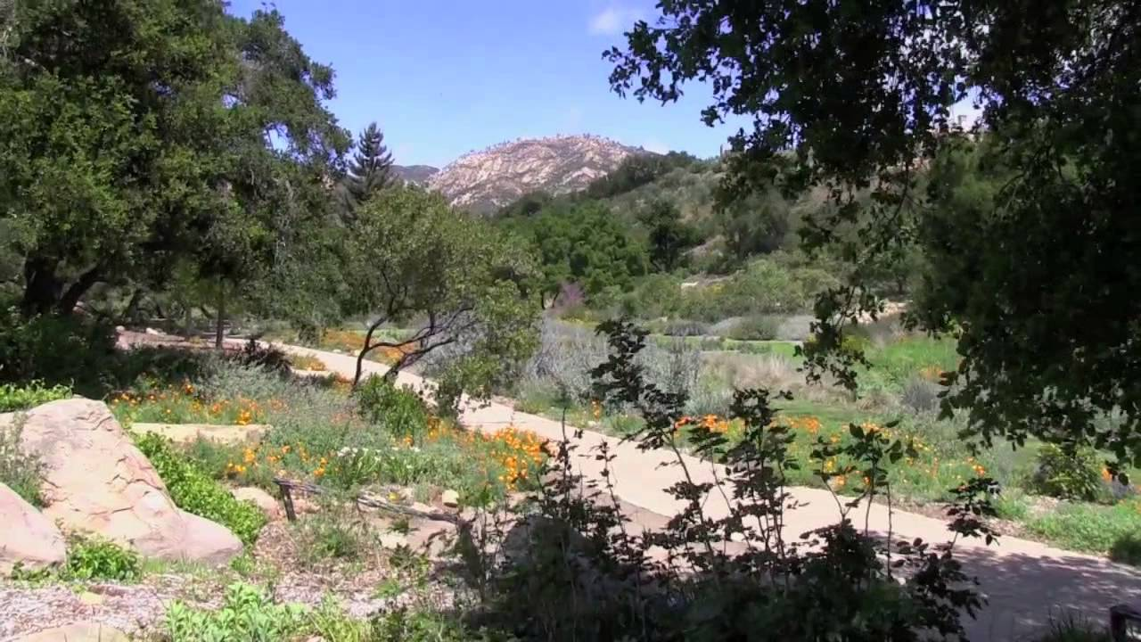 santa barbara botanic garden and gardens of the world 2013 - Santa Barbara Botanic Garden