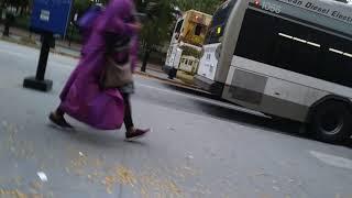 Gambar cover The Ripta buses in providence ri