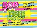 Joe & Kevin Jonas on Nick's Diabetes (Tiger Beat & BOP)