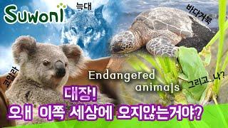 코알라, 바다거북, 늑대 ... 그리고 나 (feat.…