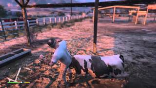 Gta5 cow killing