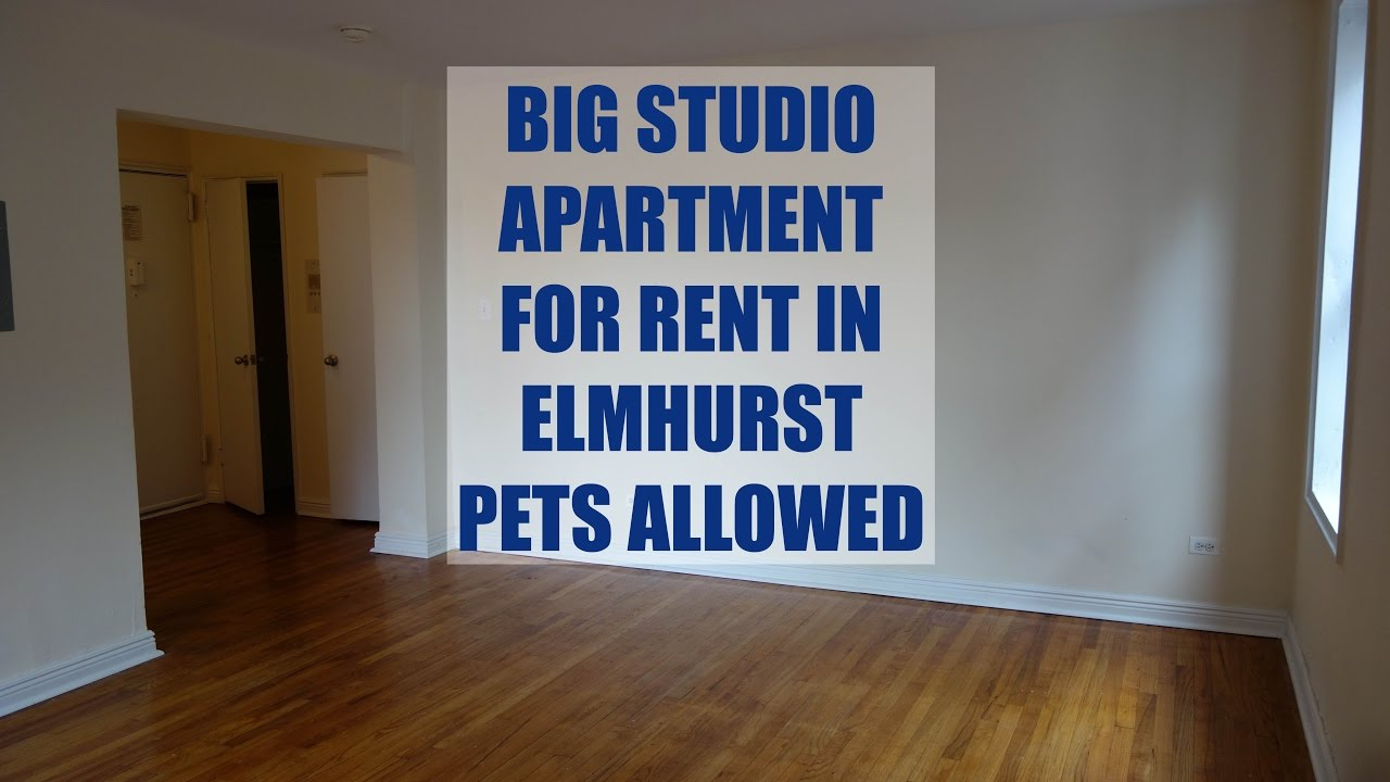 Large and bright studio apartment for rent in Elmhurst ...