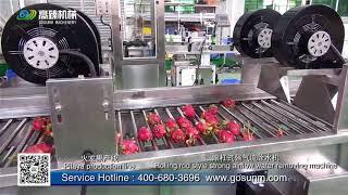 Automatic Fruit(Dragon fruit,Pitaya) wasнing grading sorting weight packing line--Gosunm machinery