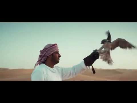 Entdecke alles, was in Dubai möglich ist