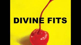 Divine Fits - The Salton Sea