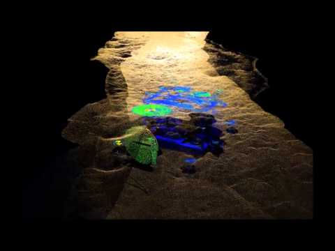 Underwater Mobile Mapping