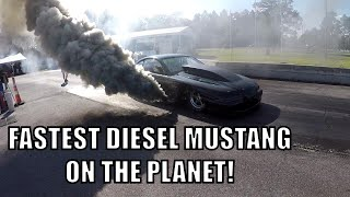 DIESEL MUSTANG POWERSTROKE WITH HUGE CAM AND LOPE!!