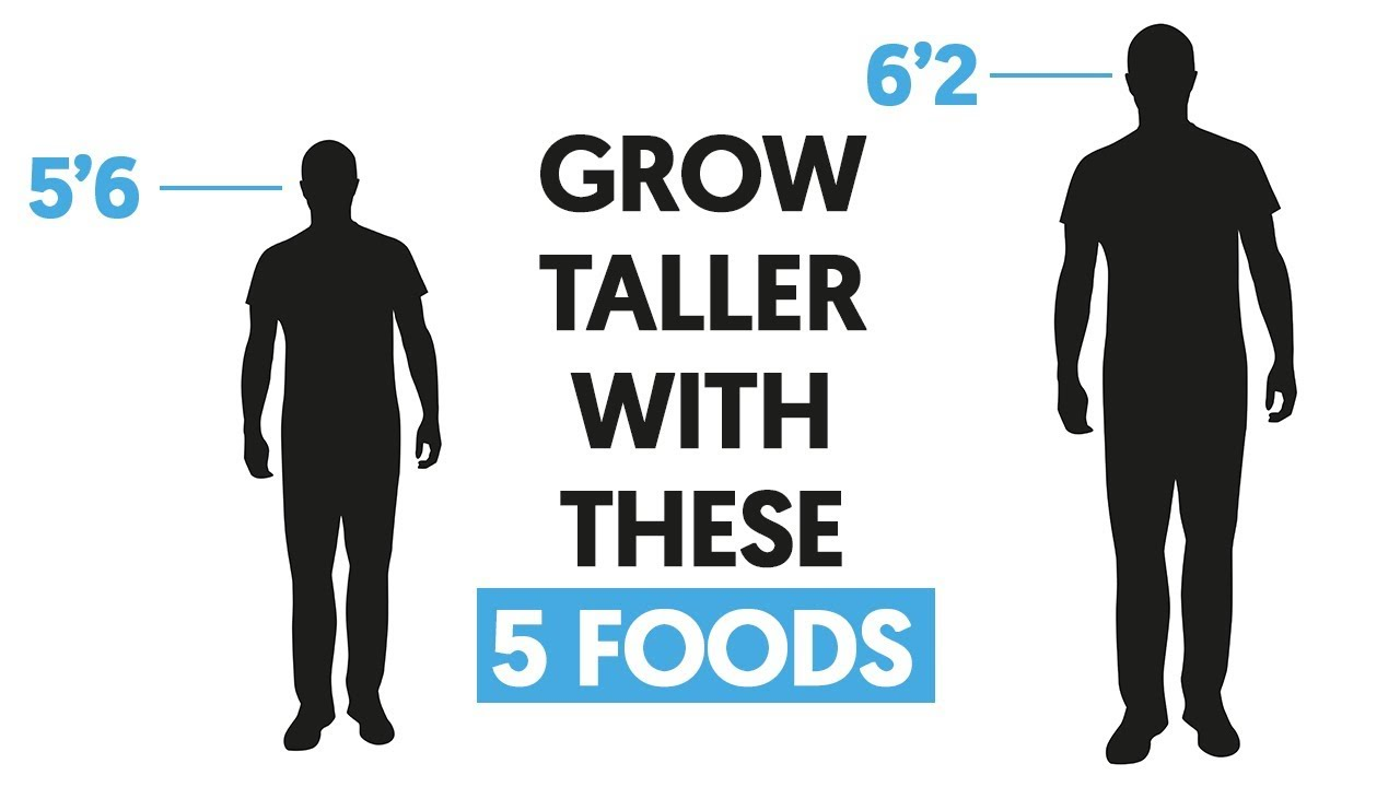 5 Essential Foods That Will Make You Taller Youtube