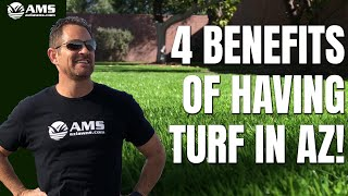 4 Compelling Health Benefits of a Grass Yard in Phoenix