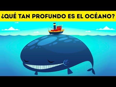 ¿Qué Tan Profundo Es El Océano En Realidad?