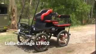 4 Wheel Horse Carriage Lth02