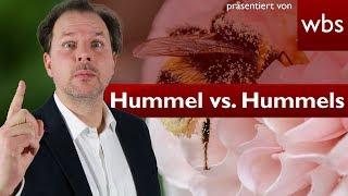 Hummels vs. Hummel – Streit um Influencer-Schuhkollektion | Rechtsanwalt Christian Solmecke