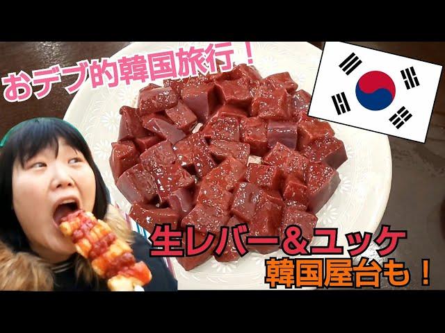 【韓国旅行】おデブが生レバー、ユッケ&韓国屋台でただ食べる!