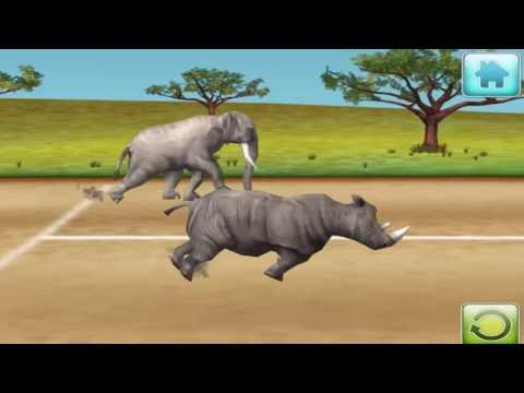 Animals Race Find Which Is The Fastest Animals in Jungle M36 Animal Race Education Gamepla