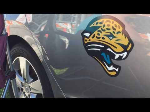 Jim's Magnetic Jaguar Background