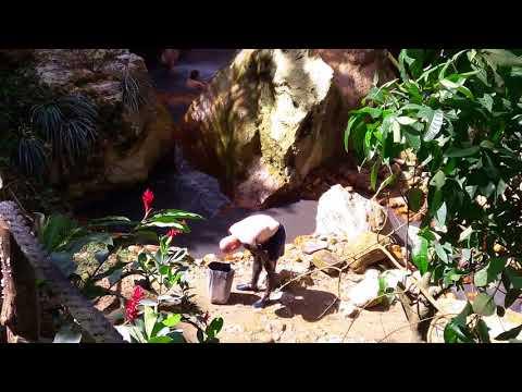 Saint Lucia' s hidden Gem experience