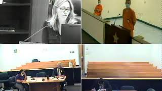 Judge Healis First Appearance June 30, 2020