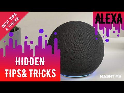 10 Best Hidden Things Alexa Can Do | MashTips
