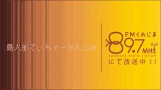 2013年2月18日_子供の病気・小児科医_島人揃てぃちゃーがんじゅ 三宅梢子 動画 26