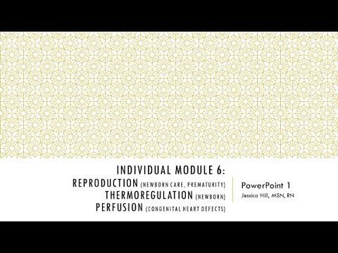 IM 6: PP 1 Lecture 1