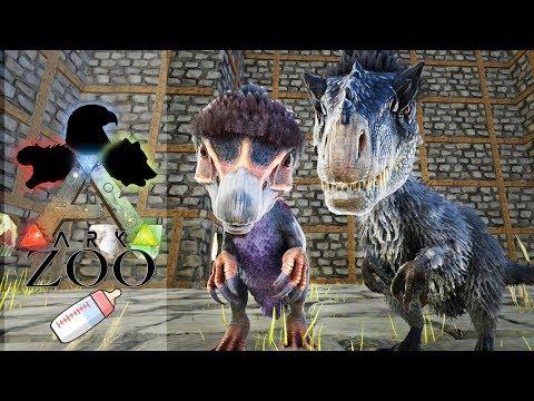 ARK ZOO - 55 : Bébés Yutyrannus et Therizinosaurus !