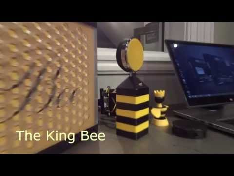 King Bee Microphone From Box to Business Demo and Review