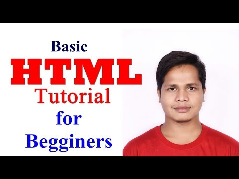 Basic HTML Tutorial For Beginners | HTML Program And Basic Tags Explained
