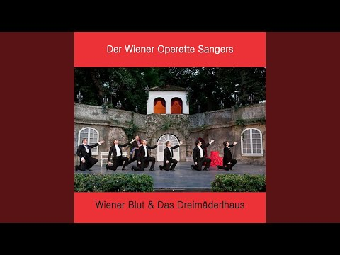 Wiener Blut: VI. Stoss an!