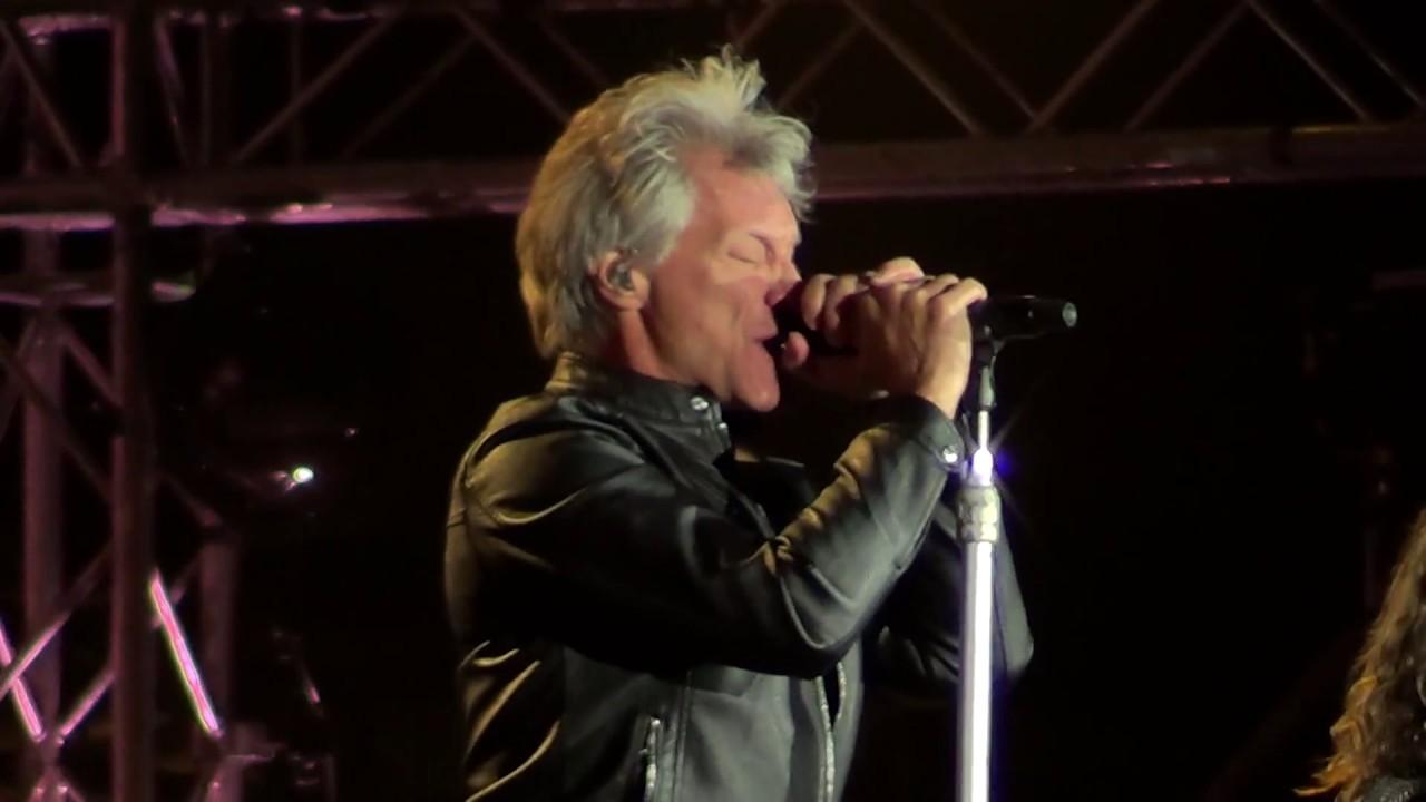 Mean Cat Video Bon Jovi