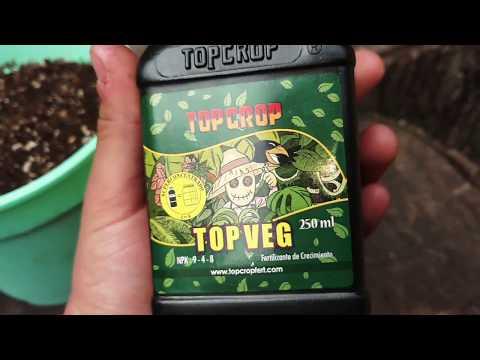 Fertilizante de crecimiento TOP VEG 🌱 | Linea TOP CROP, fertilizantes buenos y accesibles