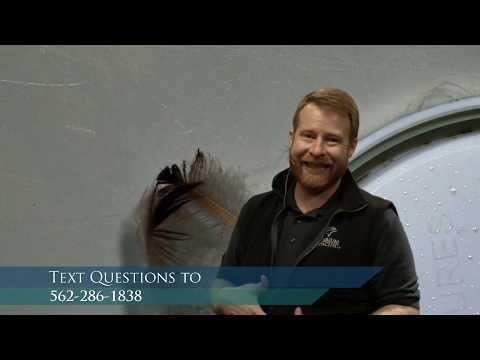 Aquarium Exploration: Birds - From Penguins To Puffins (Gr 3-5)