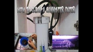 How To Clean A Cannister Filter (External Filter)