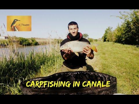 Carpfishing in canale, Lorgana (BO) di Edoardo M. Martini