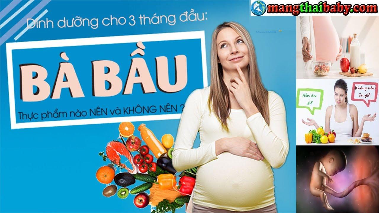 ✅ Những Món Ăn Tốt Cho Bà Bầu 3 Tháng Đầu Tránh Sảy Thai | Thực Phẩm An Thai
