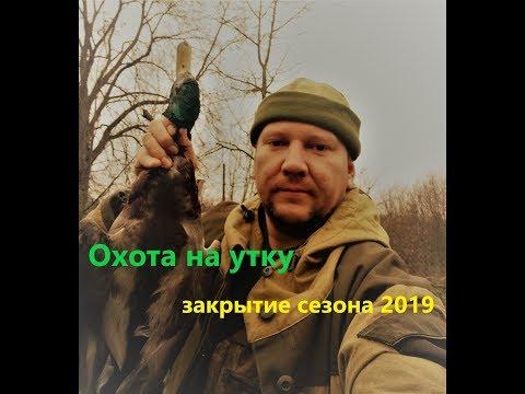 Необычная находка в лесу. Охота на утку, закрытие сезона 2019. Необычная находка. Красивый выстрел.