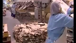 Processo de Fabricação do Bacalhau Seco e Salgado