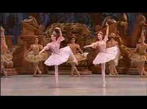 Sleeping Beauty ballet- opéra de Paris