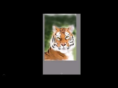 Drawing a Tiger on my Galaxy Note 2 HD