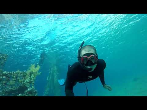 Free Diving Red Star Restaurant Red Sea Eilat Coral Reef 09 June 2018